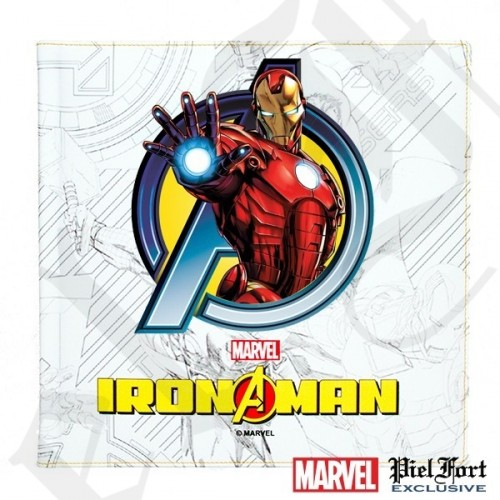 Album Photo Iron Man V3